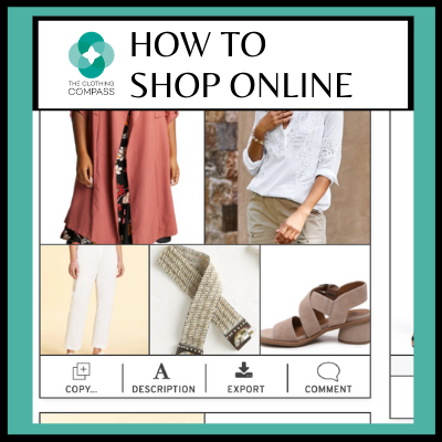 how-to-shop-online-feature